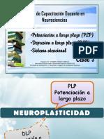 PLP - DLP - Atención.pdf