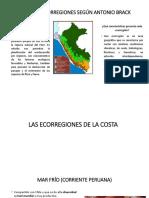 REGIONES NATURALES.pptx