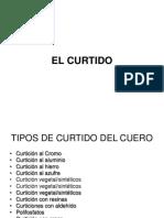 EL CURTIDO.ppt