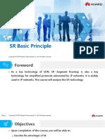 HC110110036 SR Basic Principle
