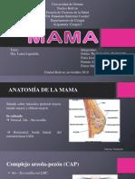 Seminario mama modificado.pdf