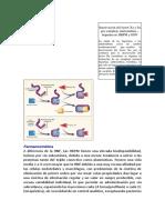 Inactivación del factor Xa y Iia por complejo antitrombina.docx