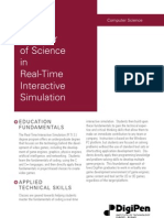 Real Time Interactive Simulation (videogame programming)