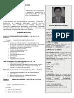 CURRICULUM VITAE.pdf.docx