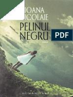 Ioana Nicolaie - Pelinul Negru (Fragment)