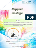 rapportdestageamineocp-190920125229.pdf