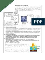 REFLEXION SOBRE LOS EFECTOS DE LA LLUVIA ÁCIDA.docx