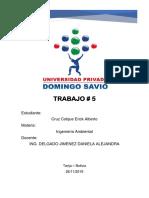 TRABAJO 5.docx