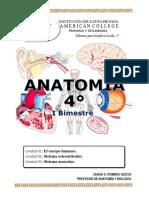 ANATOMIA 4TO - I BIMESTRE.docx