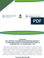 FCT-FCDB ESPAÑOL.pdf