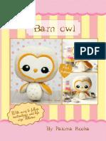 Barn Owl Noia Land