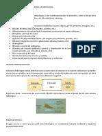 PRINCIPIOS BASICOS_RESUMEN.docx