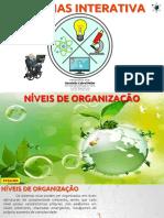 EF06CI06 - Níveis de Organização