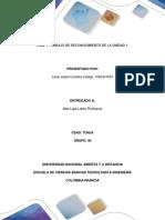 FASE 1 TRABAJO DE RECONOCIMIENTO DE LA UNIDAD 1_Leidy_Cubides.docx
