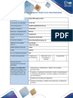 Anexo 1 Formato plan de trabajo practica profesional (1).docx