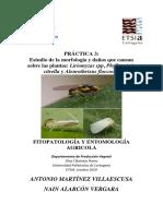 practica 3__.pdf
