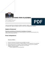 CVMARCOFAYA ACTUAL.doc