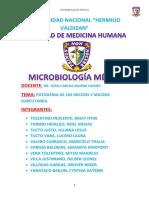 1 PATOGENIA DE LAS MICOSIS.docx