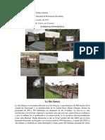 Visita de Campo.docx
