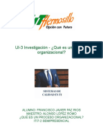 UI-3 PROCESO ORGANIZACIONAL.pdf