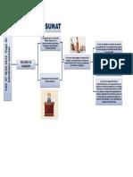 esquema.pdf.docx