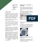 Obtención de un cultivo puro de  bacteria 4[2329].docx