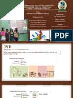 PIB Grupo #4
