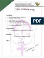 CLIMATERIO Y MENOPAUSIA (1).docx