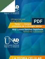 Unidad_1_Tarea 1_AnyiLorenaSanchezSepulveda.pdf