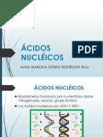 ÁCIDOS NUCLÉICOS.pdf