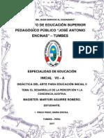 DESARROLLO DE LA PERCEPCION Y LA CONCIENCIA AUDITIVA.docx