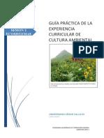 GUÍA_PRÁCTICA_02.pdf
