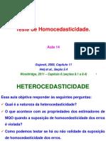 Econometria201401 Aula14 ARLMXI Homocedasticidade