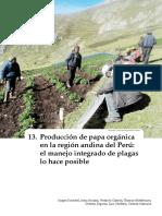 manejo organico de papa.pdf