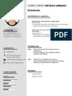 73-curriculum-vitae-empresarial.docx
