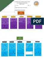 Consulta_Acidos_carboxilicos_Poaquiza_Andrea_2737.pdf