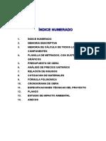 INDICE NUMERADO.doc