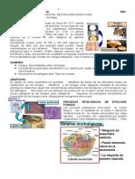 Tema10Generalidadessobremicologia.doc