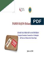 Oportunidades Comerciales en el sector agrario en Paises Bajos.pdf