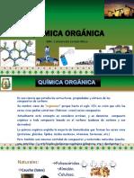 QUIMICA ORGÁNICA SESIÓN 1 (1).pdf