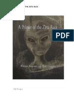 A Primer of the Zeta Race