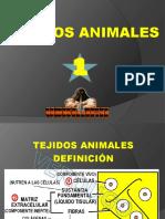 1-TEJIDO EPITELIAL.pdf
