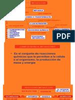 BQMII 1.0 INTRODUCCIÓN AL METABOLISMO..pdf
