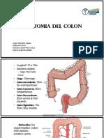 Fisiología del colon.pptx