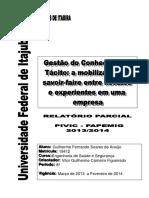 RELATORIO PARCIAL - GUILHERME FERNANDO.pdf