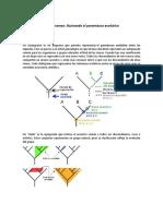Cladogramas.pdf