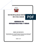 perfilproyecto2017 (1).pdf