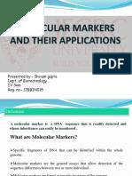 molecular marker.pptx