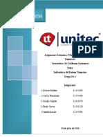 Ensayo_Idicadores_Financieros.docx