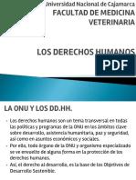 DERECHOS HUMANOS. ONU.pptx